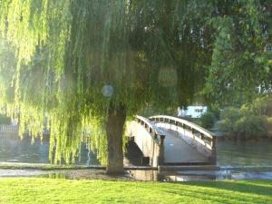 Un puente hacia la otra orilla